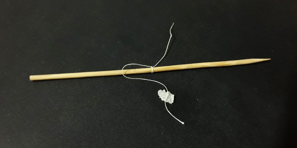 The seed crystal tied to a string.